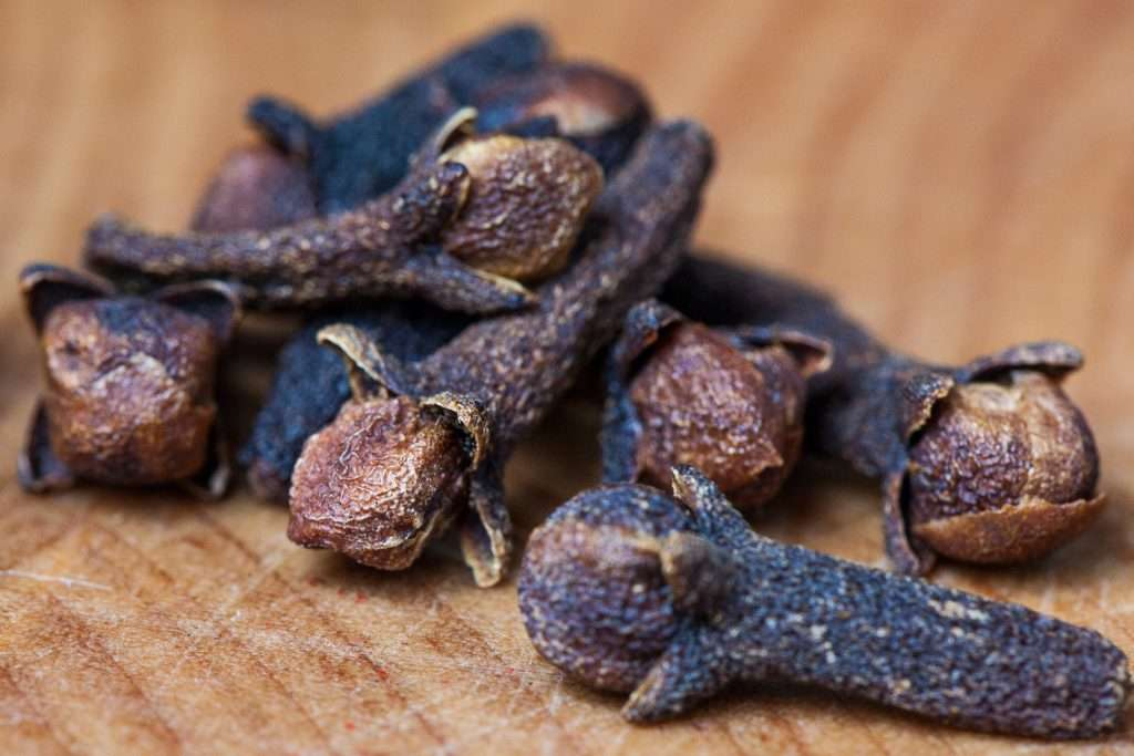 Clove Benefits for Teeth